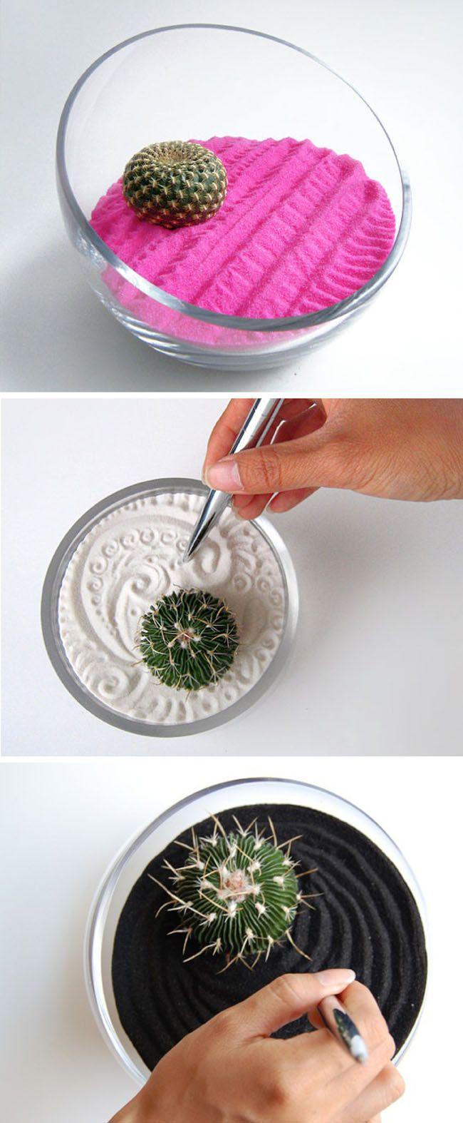 Jardines ZEN con cactus