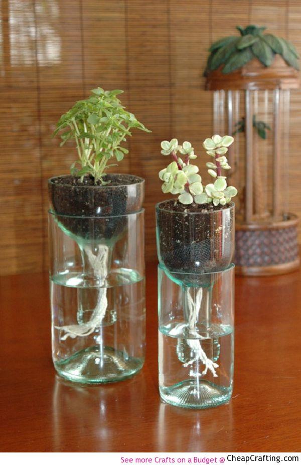 Maceteros con botellas de cristal