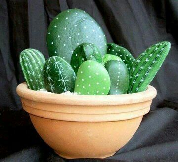Centro de cactus decorando piedras